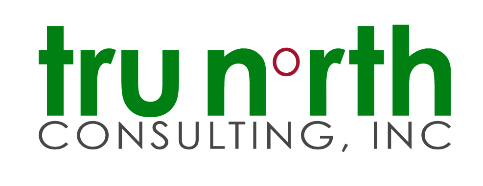 TruNorth Consulting
