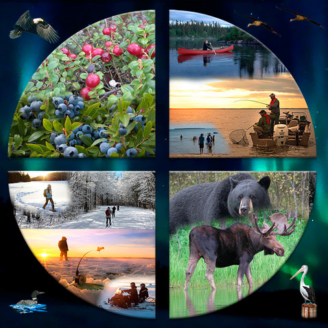 circle_activities3.jpg