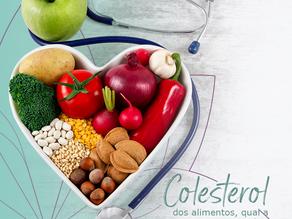 Colesterol dos alimentos, qual a verdadeira influência deles na saúde