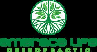 embrace life chiropractic logo - transpa