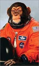 Space Monkey.jpg