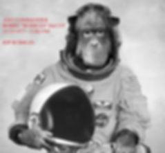 Monkey in Space III.jpg