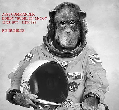 Monkey in Space III.jpg