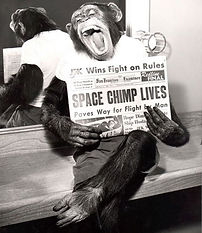 Space Chimp Lives.jpg