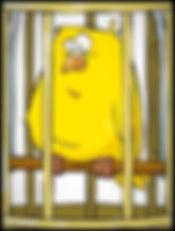 bird in cage - clean_edited_edited_edite