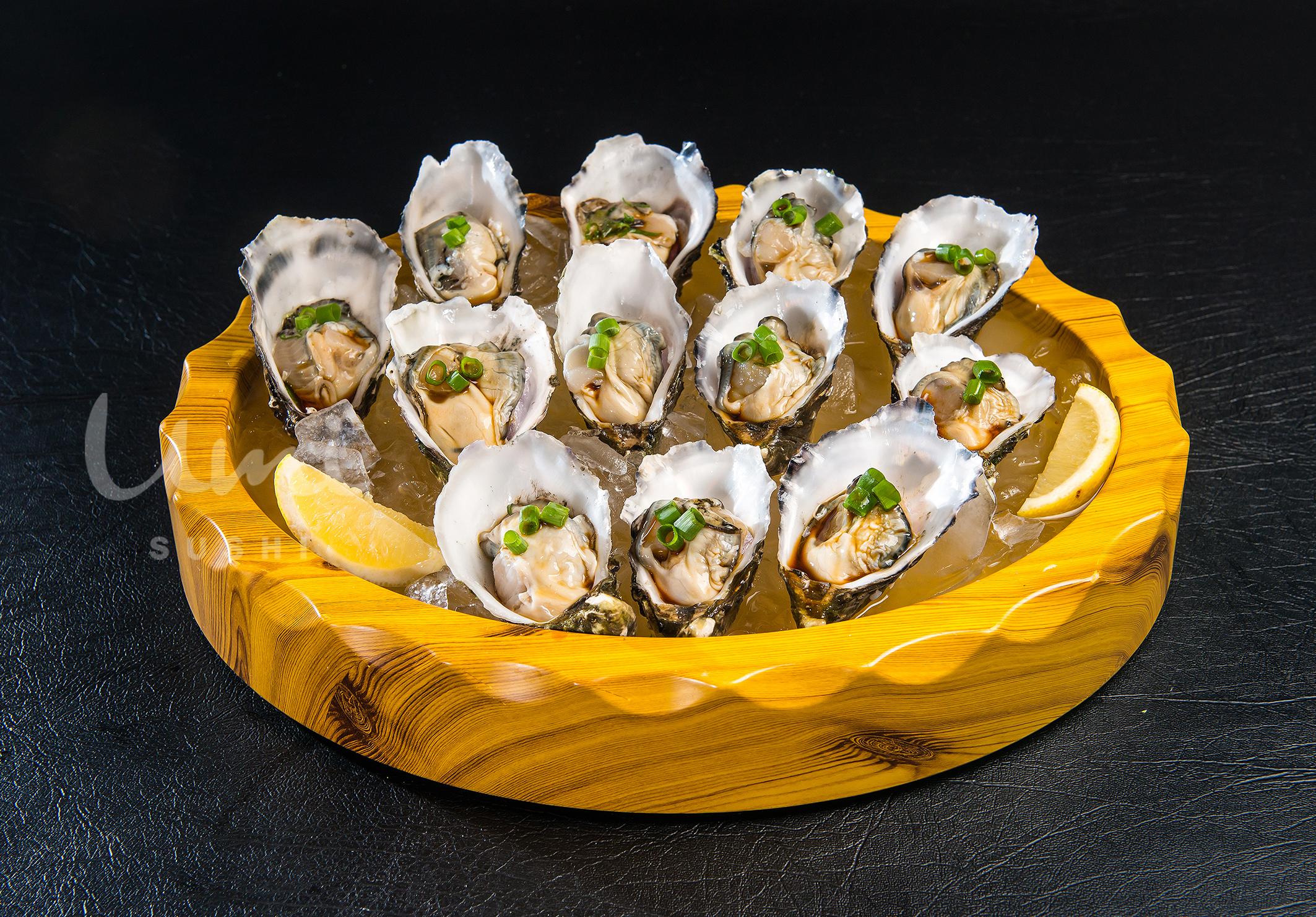 Freshly Oyster