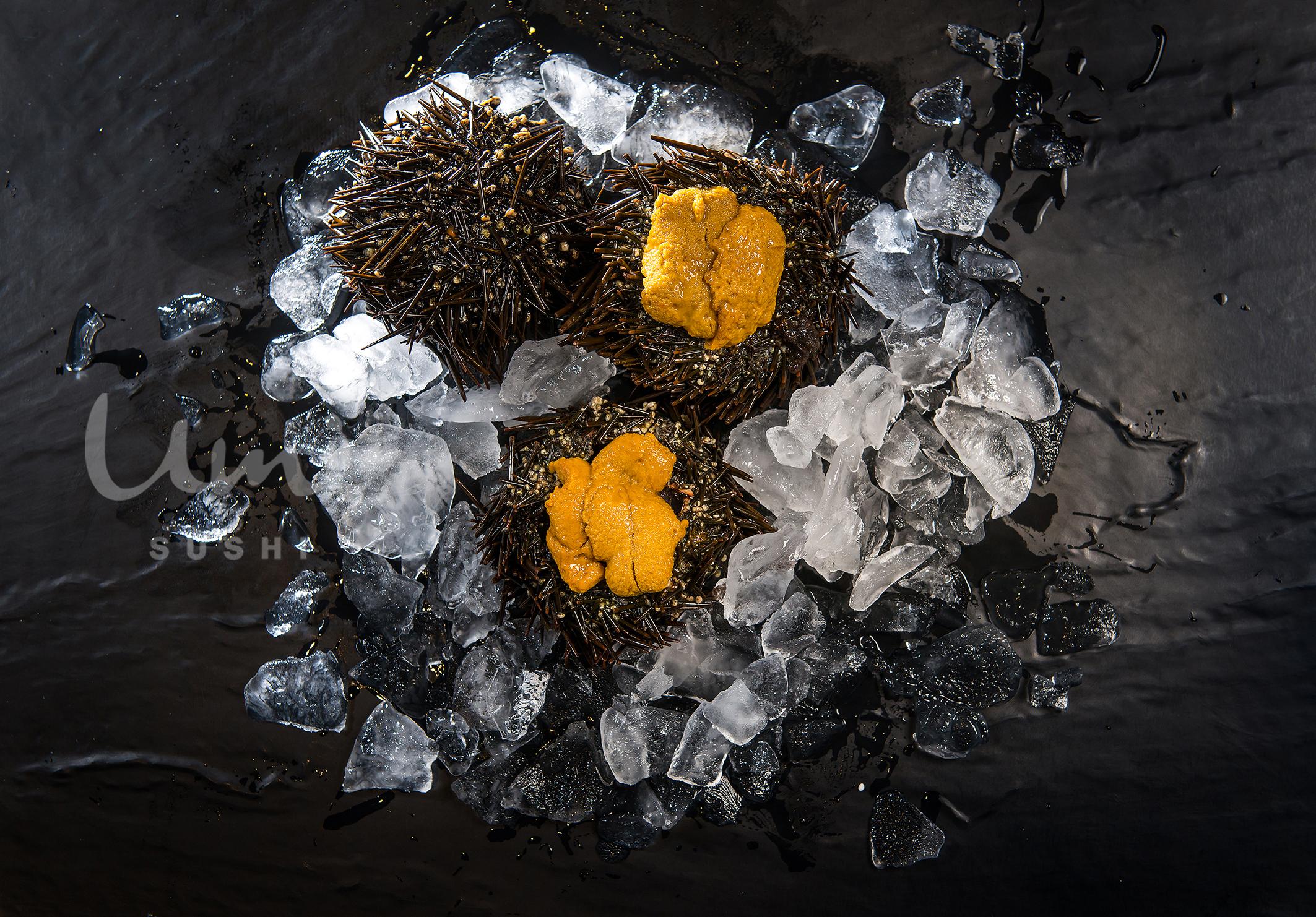 Fresh Live Uni (Sea Urchin)