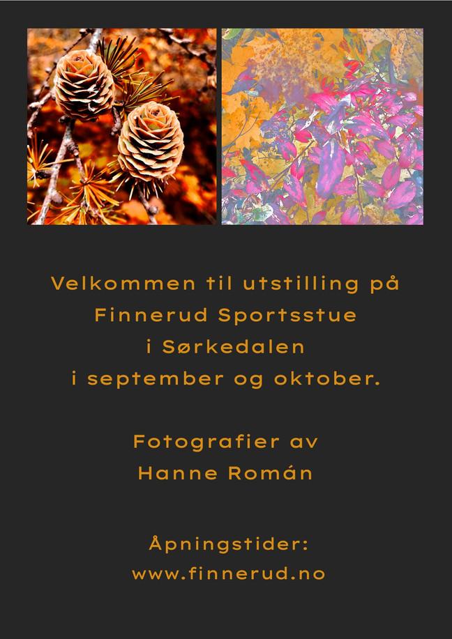 Utstilling på Finnerud Sportsstue