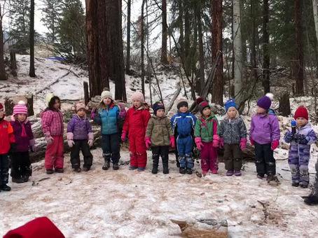 Bears Den Forest Concert