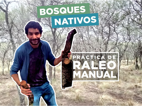 Práctica de Raleo Manual