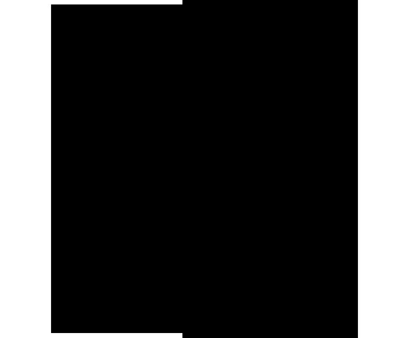 logo_black