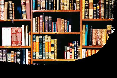 Book shelf 2.png