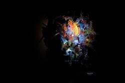 urban creature galapagos-4