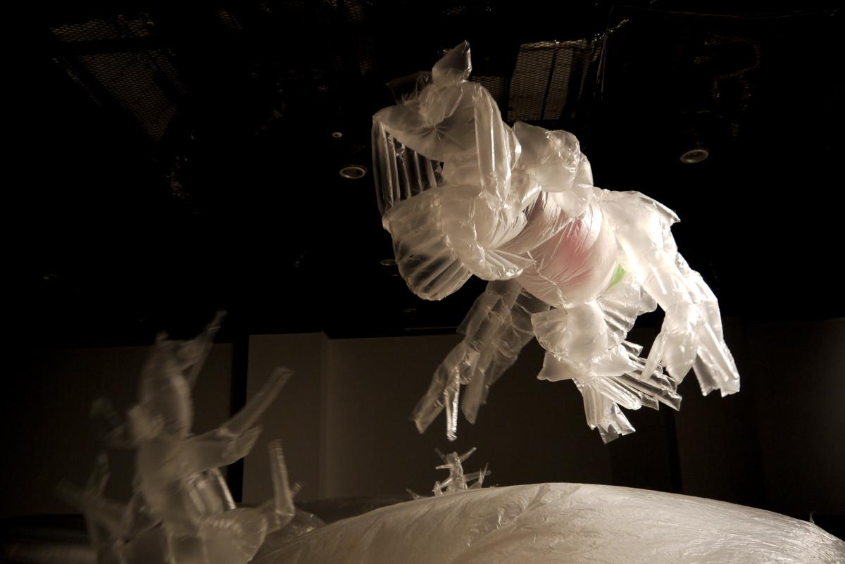 urban creatures2012-3