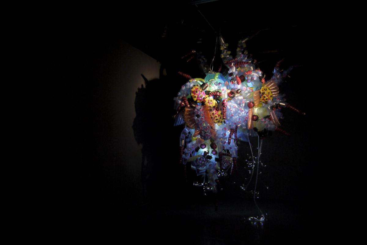 urban creature galapagos-3