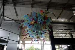 urban creature-kolon 2014-1