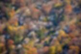 BVille Study_Aerial photo.jpg