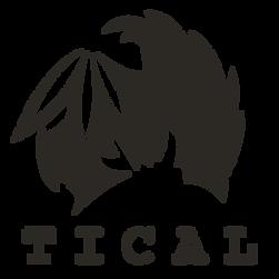 M-Tical-Logo (2).png