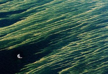 Nyhets bild 2006.jpg