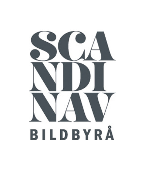 scandinav-ny-600x7101.jpg