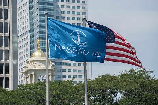 NSRE-flag.jpg