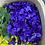 Thumbnail: wild violet + organic rose petal infused jojoba