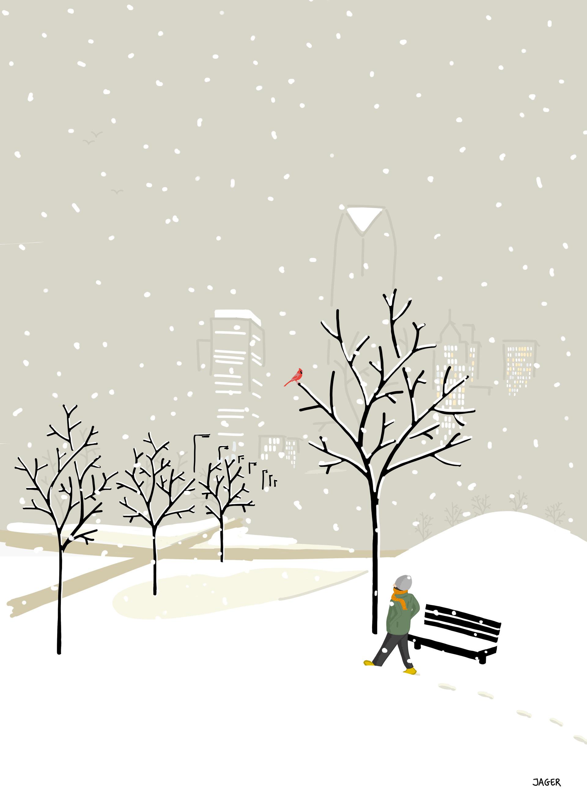 Snowstorm OKC + northern cardinal
