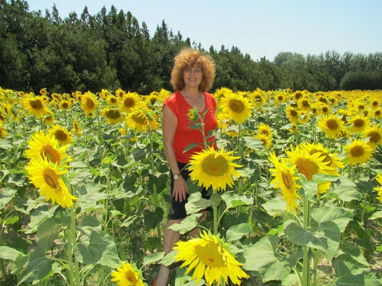 Nicole new Sunflowers