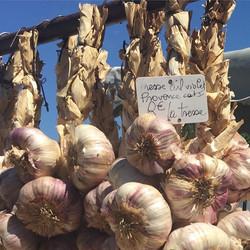 provonce garlic france nicole