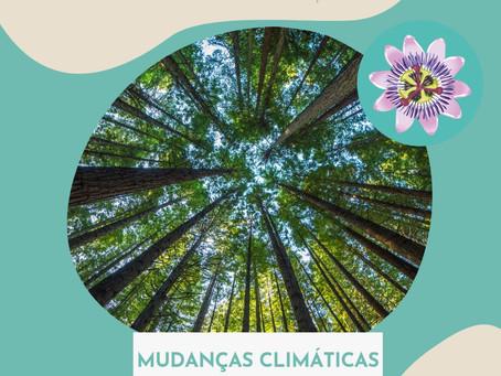 Conscientização para Mudanças Climáticas - Por Débora Tomiatti