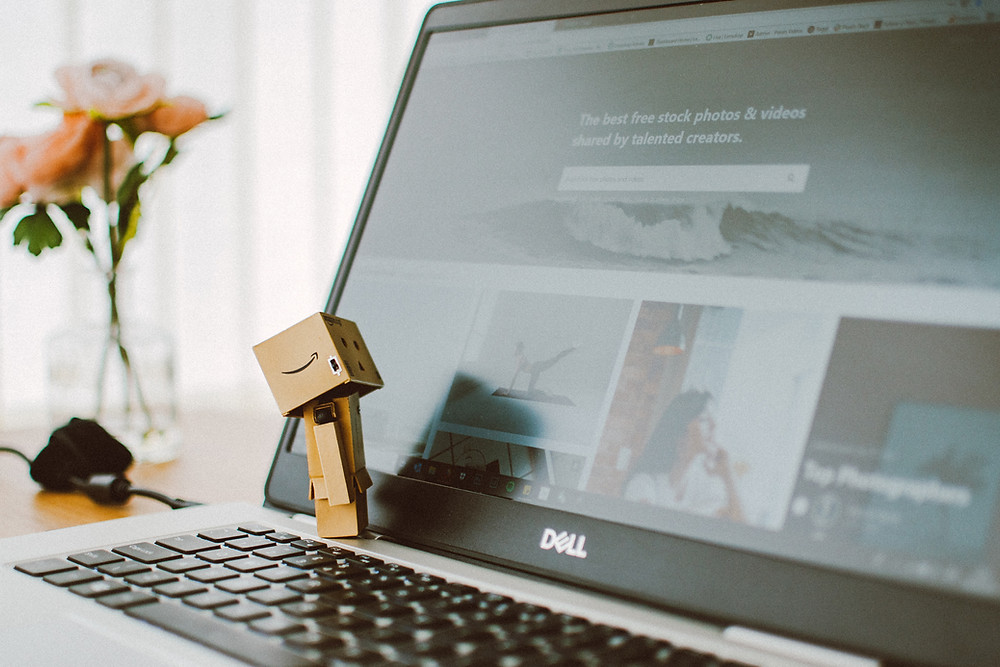 Danbo Toy looking at a website screen.