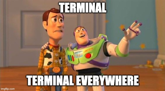 "Meme of Toy Story characters where Buzz Lightyear is saying ""Terminal, Terminal Everywhere"" to Woody."
