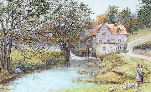 Dorking River Mole Castle Mill Swimming History