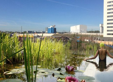 The First of a Kind – A New Public Swimming Pool for the UK – Kings Cross – London