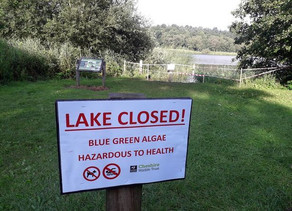 Swimming forbidden in Hatchmere Lake