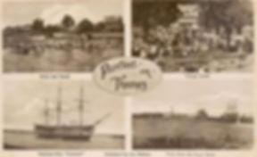 PURFLEET Swimming History