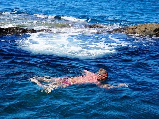 Wild Swimmingh Tenerife