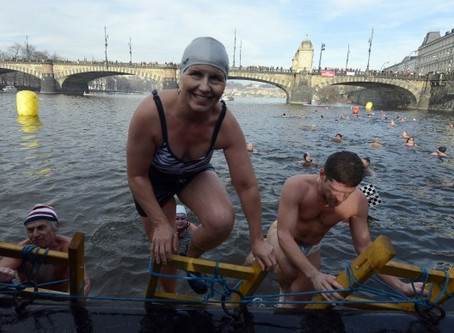 Czechs have a Long Tradition in Winter Swimming