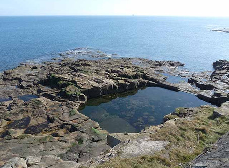 Swimming History Picture of the Week: Swimming pool, Table Rocks – Whitley Bay