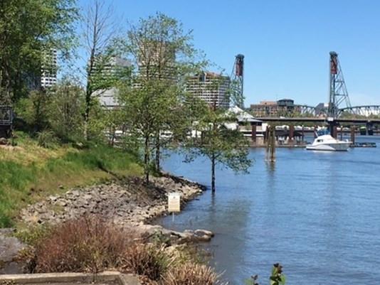 Swimming beach proposed for Willamette River, Oregon USA