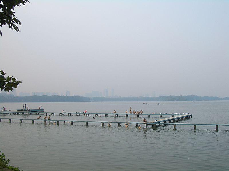 Wild Swimming in China's Largest Urban Lake: Wuhan's East Lake