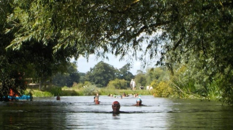 Enjoy some slow, wild swimming in the River Cam