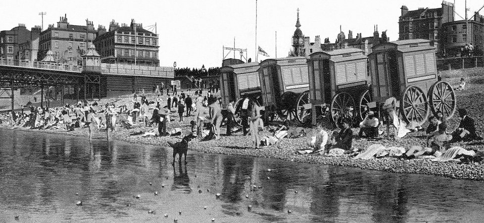 Brighton Beach Swimming History
