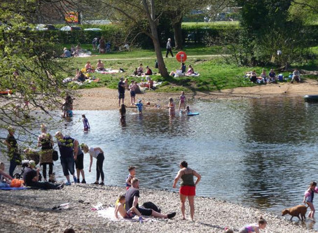 Help count bathers in bid to stop pollution!