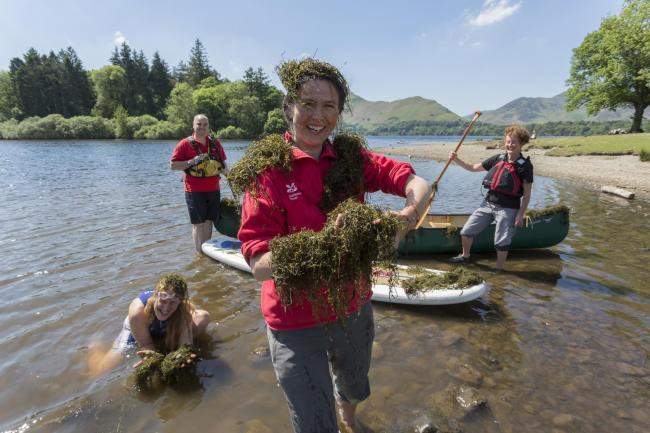 Wild Swimmers can Help Protect the Lake District