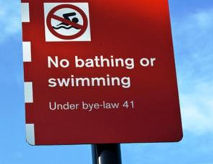 Swimming to Freedom in 2012?