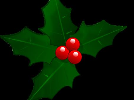 Alle Jahre wieder: So nutzen Sie Ihr Weihnachtsmailing für Kundenpflege & Umsatzsteigerung