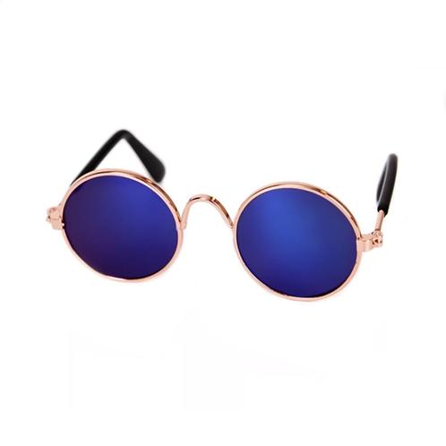 Hundesonnenbrille blau