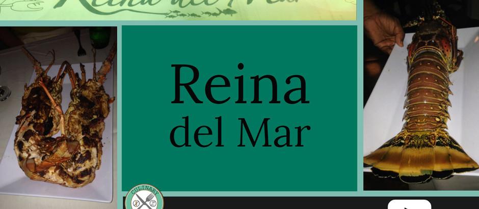 CHEF INTERVIEW: REINA DEL MAR