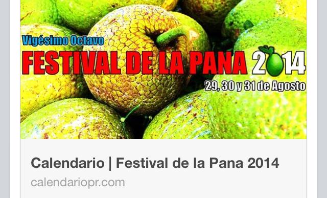 Festival de la pana